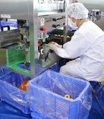Eine vollautomatisierte Kaki-Schäl-Maschine mit Ansaug-Technik