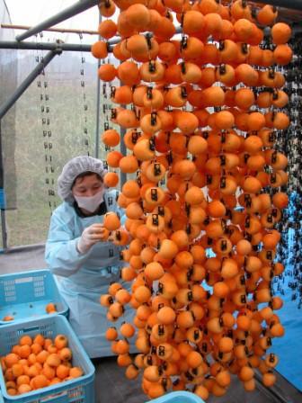 皮をむいた柿を吊します