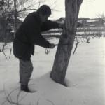 成り木責め