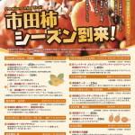 市田柿シーズン到来-2019-HP.cleaned